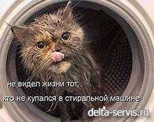 ремонт стиральных машин ЦАО