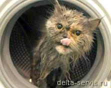 ремонт стиральных машин Марьино