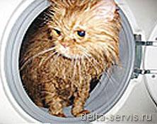ремонт стиральных машин Строгино