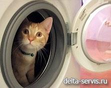 ремонт стиральных машин ЗАО